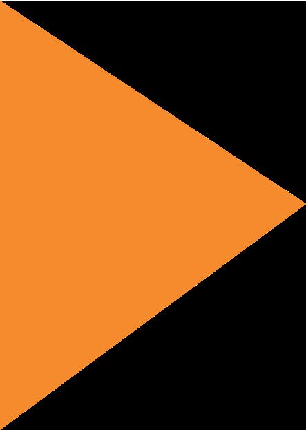 Orange Triangle Design