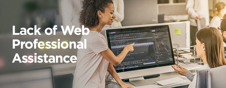 Lack of Professional Web Assistance