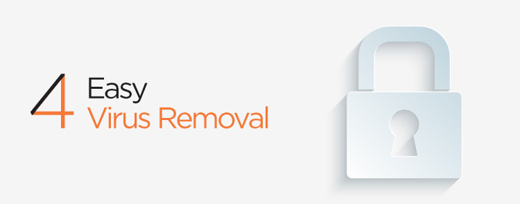 Easy to remove viruses in web maintenance